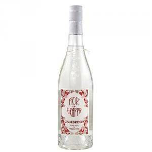 gambrinus gambrinus fior di grappa 70 cl
