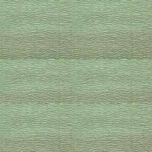 cartotecnica rossi cartotecnica rossi carta crespata verde salvia 180gr (50 x 250cm)