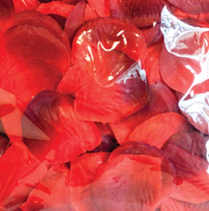 petali tessuto rosso/bordeaux 288 pz