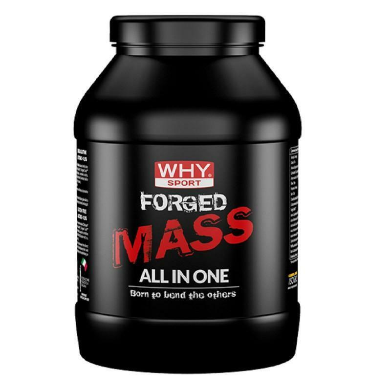 biovita group why sport - forged mass - integratore gainer proteico in polvere gusto cacao - 1kg