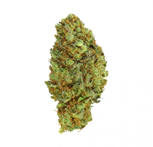 hemporio della canapa galaxy kush - medical hemp canapa - 10 g