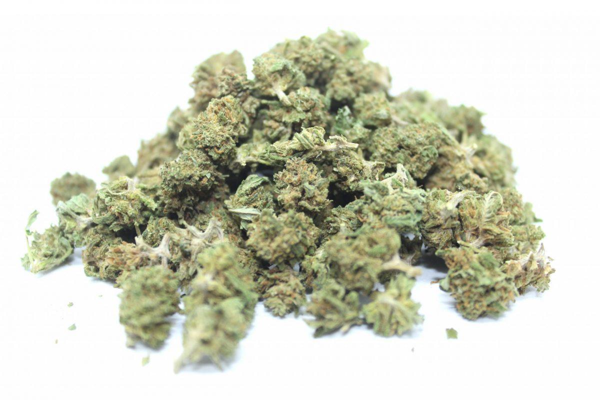 hemporio della canapa cecil 4.20 - medical hemp canapa sativa ad alto contenuto di cbd - 10 gr